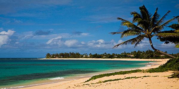 Playa North Shore Oahu