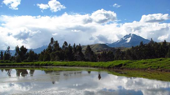 Chicón y Agua Cuzco