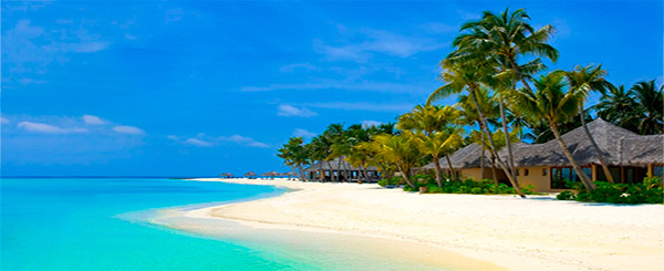 Playa Bávaro Caribe