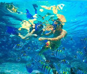 Snorkel en Playa del Carmen Riviera Maya