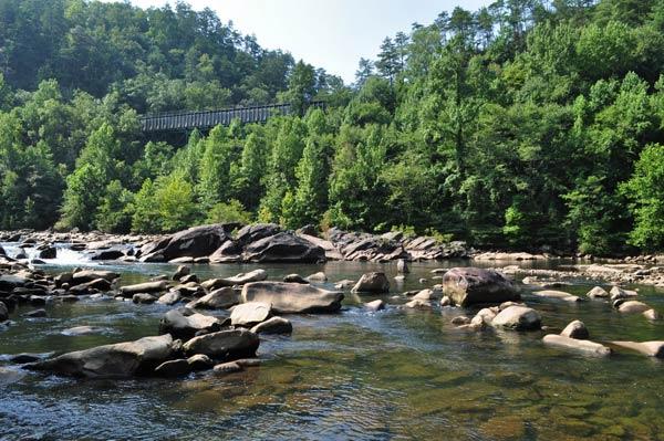 Bosque del Cherokee