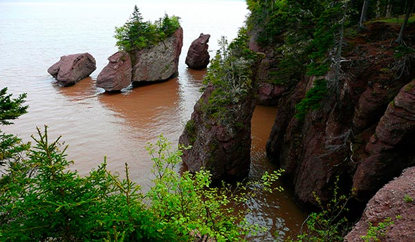 hopewell-rocks-canada