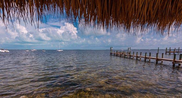 naturaleza en Miami y Keywest