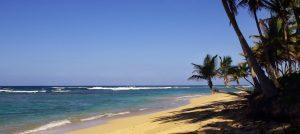 oferta de hoteles en playa bavaro