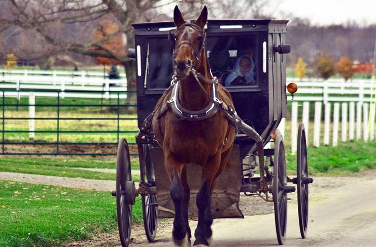 paseo a caballo con los Amish