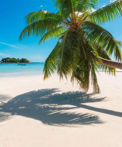 Viajes recomendados al Caribe